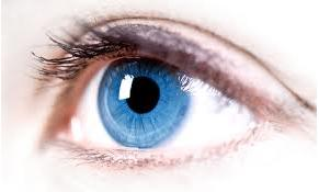manfaat vitamin A salah satunya untuk menjaga penglihatan