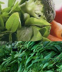 mineral dalam tubuh dapat terpenuhi dari sayur-sayuran