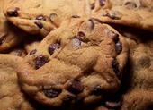 Resep Cokelat Cookies Macaron