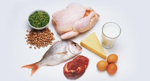 sumber-sumber zat putih telur atau protein