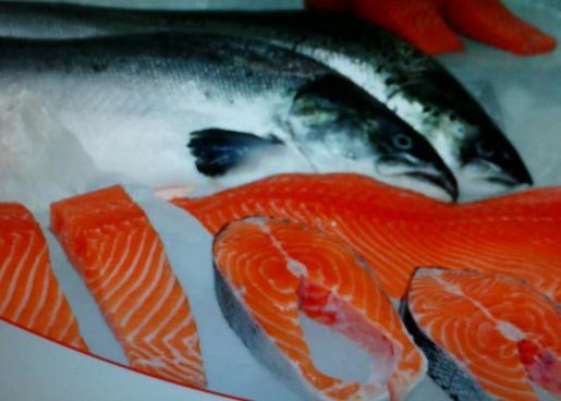 Ikan salmon menjadi salah satu sumber asupan makanan untuk kecerdasan otak anak